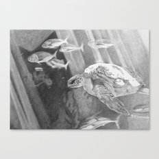 Turtle and fishes - Underwater seascape Canvas Print