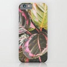 Leafy Slim Case iPhone 6s