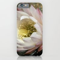 iPhone & iPod Case featuring Cactu Flower by AuFish92024