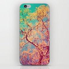 Indio iPhone & iPod Skin