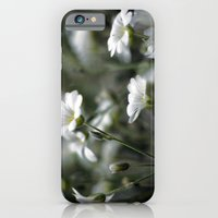 Snow In Summer iPhone 6 Slim Case