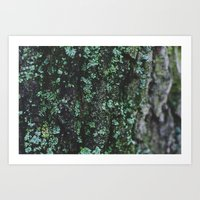 Emerald Bark Art Print