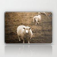 Sheep in a field Laptop & iPad Skin