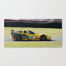 Yellow Jacket Canvas Print