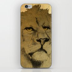 LION EYES iPhone & iPod Skin