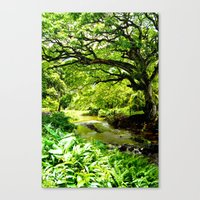 Hawaii Hidden Valley Canvas Print
