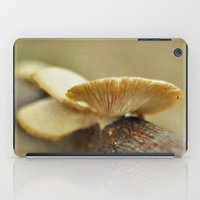 Silver And Gold iPad Case