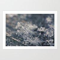 Macro Snowflakes 1 Art Print