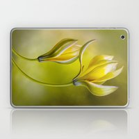 Tulipa Laptop & iPad Skin