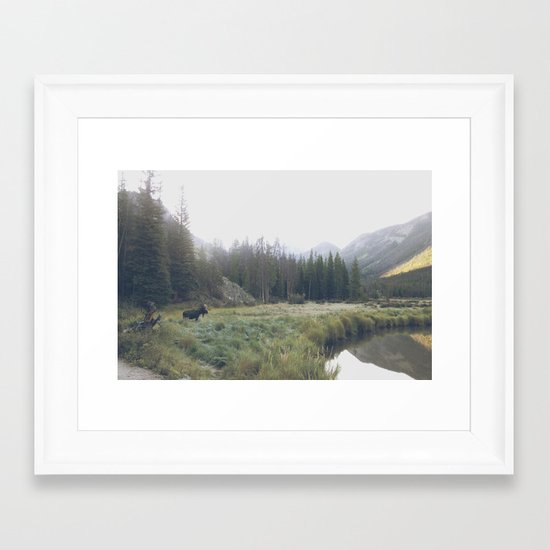 Morning Meadow Moose Framed Art Print