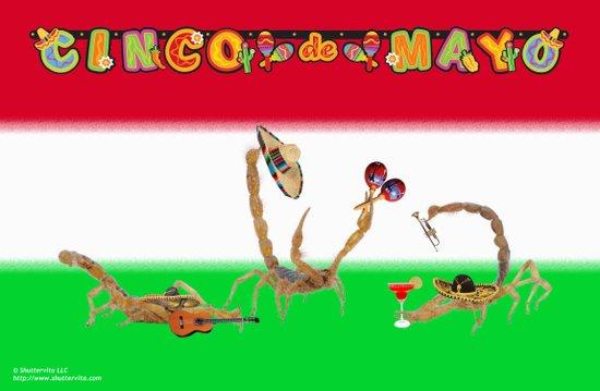 Happy Cinco de Mayo from Arizona Art Print