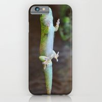 iPhone & iPod Case featuring Green Lizard by Paige Norman