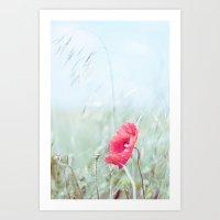 Thoughtful Poppy Art Print
