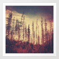 Burnt Forest IV Art Print
