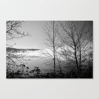 Minnesota North Shore #1 Canvas Print
