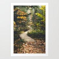 Canyon Path Art Print