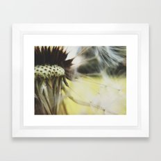Dandelion: Seeds Horizontal Framed Art Print