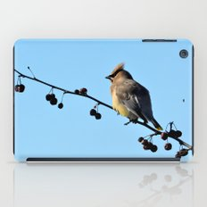 Waxwing on a Winter's Day iPad Case