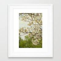 Dogwood Breeze Framed Art Print