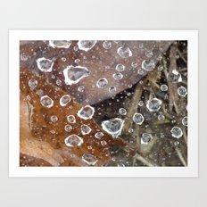 raindrops 2014 Art Print