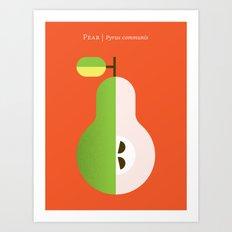 Fruit: Pear Art Print