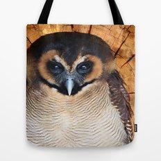 Asian wood Owl Tote Bag