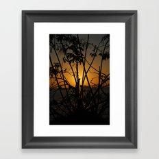 Sunrise 2 Framed Art Print