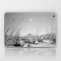 California Ocotillo Laptop & iPad Skin
