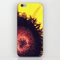 Black-Eyed iPhone & iPod Skin
