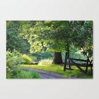 Sunshine and Shadows Canvas Print