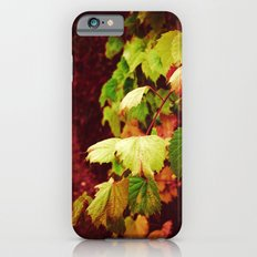 Almost Fall iPhone 6 Slim Case