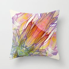 Space Cookies (Don't eat Crystal) Throw Pillow
