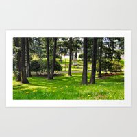 South Park landscape Art Print