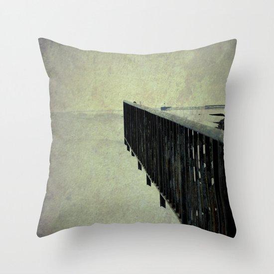 "Lake Erie ~ ""Silent Poetry"" Throw Pillow"