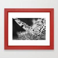Flutter III  Framed Art Print