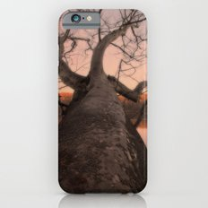 nature's perspective iPhone 6 Slim Case