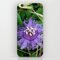 Passion vine flower iPhone & iPod Skin