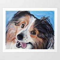 Sheltie Dog  Art Print