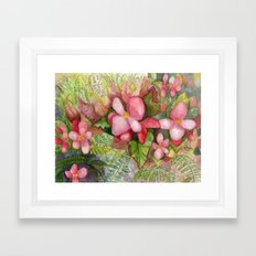 Begonia Beauty Framed Art Print