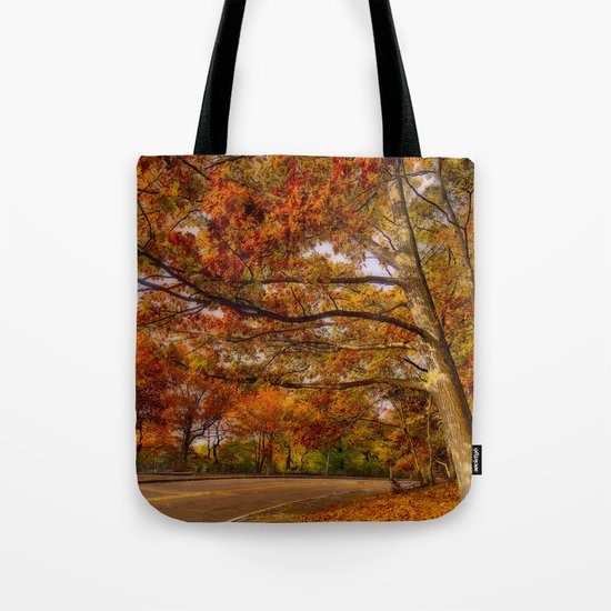Fall Road,Chestnut Hill, Massachusetts Tote Bag