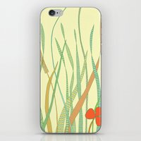 Summer Grass iPhone & iPod Skin