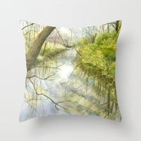 Root River At Racine Throw Pillow