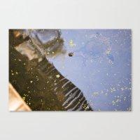 Turtle Pond Canvas Print