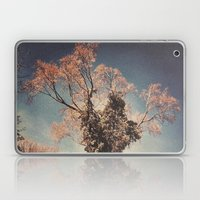 Tree 4 Laptop & iPad Skin