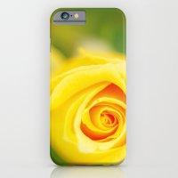 Yellow rose iPhone 6 Slim Case