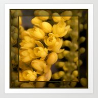 Tiny Yellow Blossoms Art Print