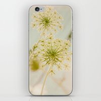 Summer Botanical Vintage Queen Anne's Lace iPhone & iPod Skin