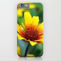 Prairie Flower iPhone 6 Slim Case