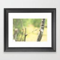 Green Fence Framed Art Print