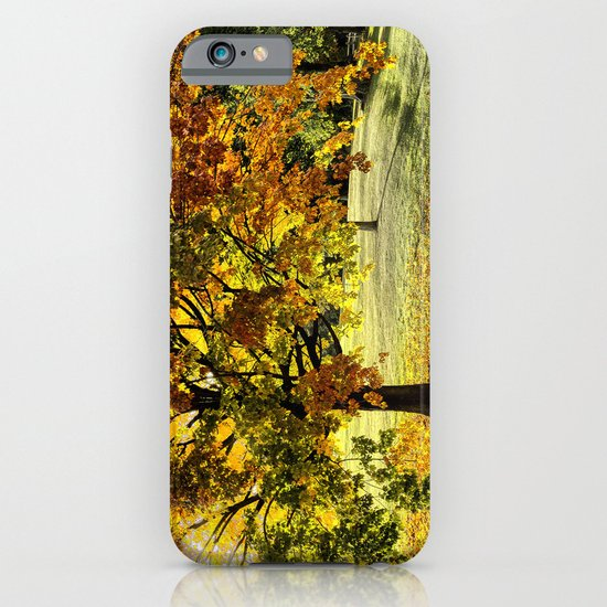 Maple in fall colors  iPhone & iPod Case